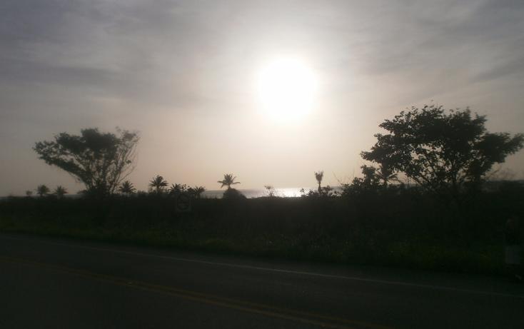 Foto de terreno habitacional en venta en  , punta xen, champotón, campeche, 1286941 No. 05