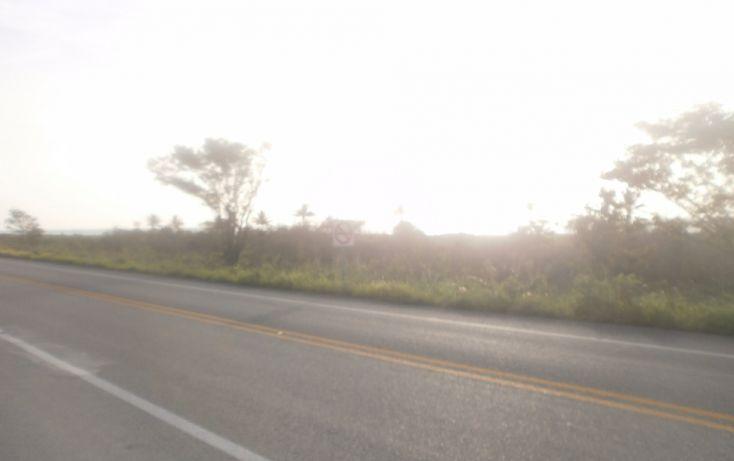 Foto de terreno habitacional en venta en, punta xen, champotón, campeche, 1286941 no 06