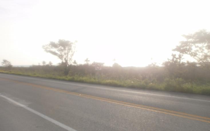 Foto de terreno habitacional en venta en  , punta xen, champotón, campeche, 1286941 No. 06