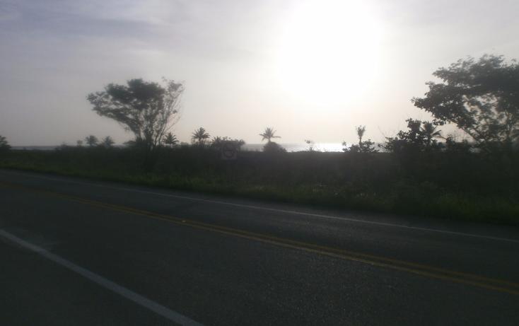 Foto de terreno habitacional en venta en  , punta xen, champotón, campeche, 1286941 No. 07