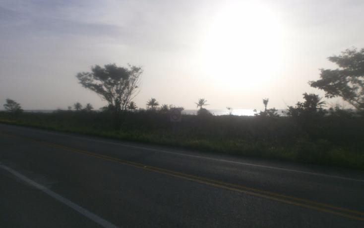 Foto de terreno habitacional en venta en  , punta xen, champotón, campeche, 1286941 No. 08