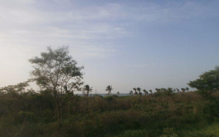 Foto de terreno habitacional en venta en, punta xen, champotón, campeche, 1286941 no 10