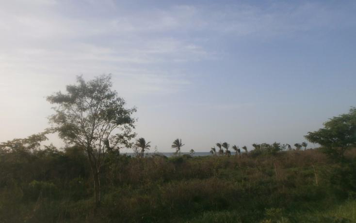 Foto de terreno habitacional en venta en  , punta xen, champotón, campeche, 1286941 No. 10