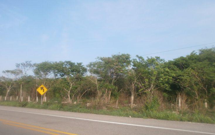 Foto de terreno habitacional en venta en, punta xen, champotón, campeche, 1286941 no 11