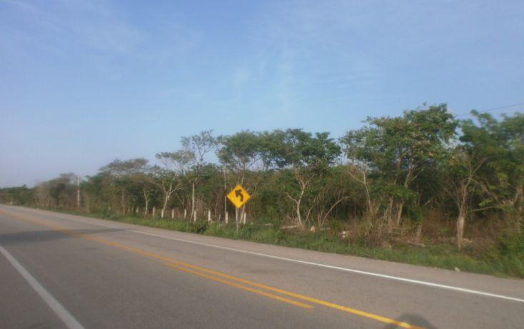 Foto de terreno habitacional en venta en, punta xen, champotón, campeche, 1286941 no 12