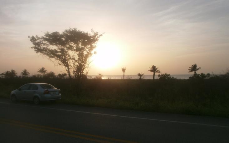 Foto de terreno habitacional en venta en  , punta xen, champotón, campeche, 1286941 No. 14