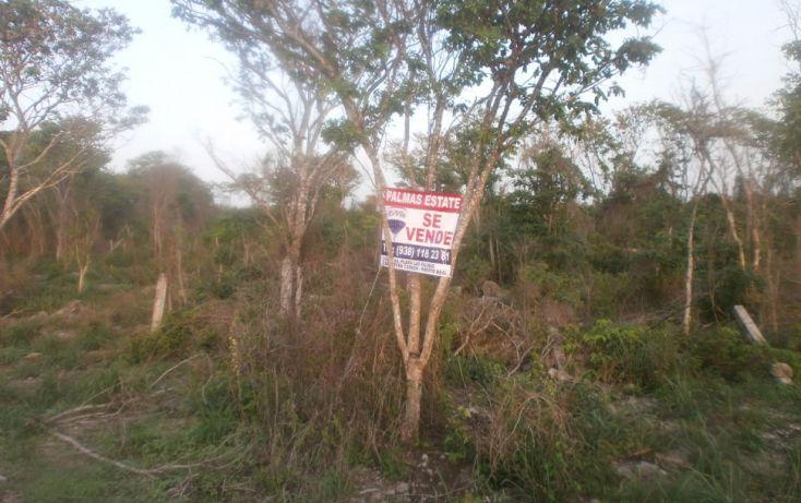 Foto de terreno habitacional en venta en, punta xen, champotón, campeche, 1286941 no 15