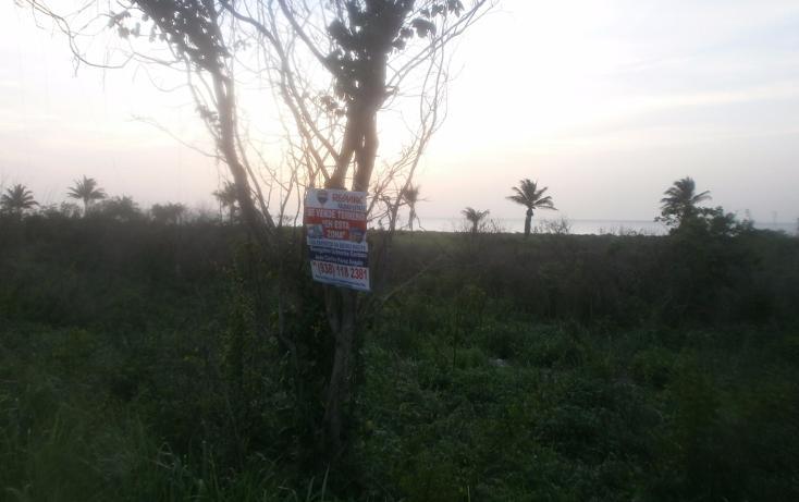 Foto de terreno habitacional en venta en  , punta xen, champotón, campeche, 1286941 No. 17