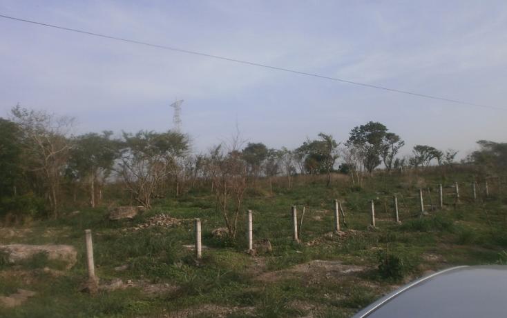 Foto de terreno comercial en venta en  , punta xen, champotón, campeche, 1286965 No. 01