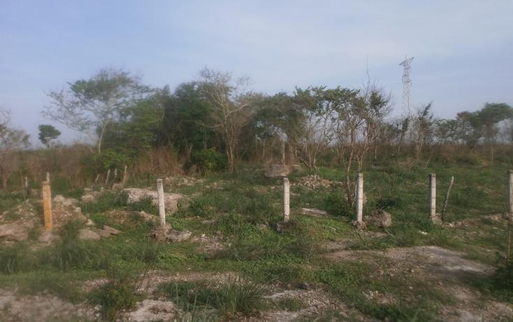 Foto de terreno comercial en venta en  , punta xen, champotón, campeche, 1286965 No. 02