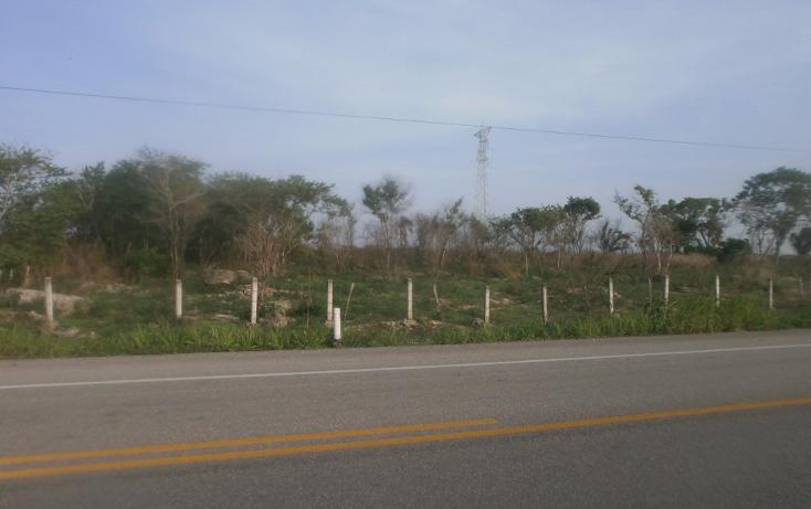 Foto de terreno comercial en venta en  , punta xen, champotón, campeche, 1286965 No. 03