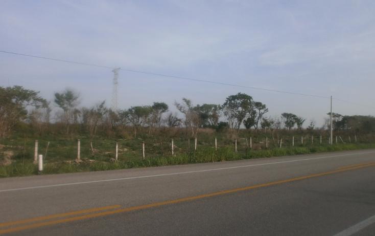 Foto de terreno comercial en venta en  , punta xen, champotón, campeche, 1286965 No. 04