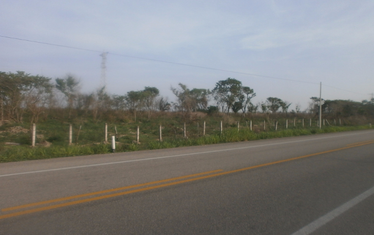 Foto de terreno comercial en venta en  , punta xen, champotón, campeche, 1286965 No. 05