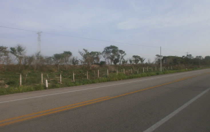 Foto de terreno comercial en venta en  , punta xen, champotón, campeche, 1286965 No. 06