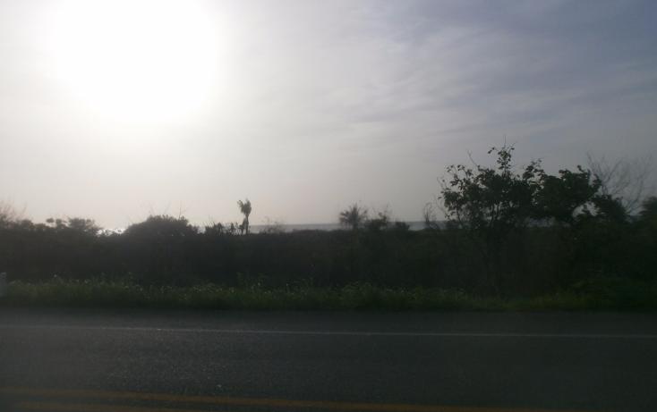 Foto de terreno comercial en venta en  , punta xen, champotón, campeche, 1286965 No. 08