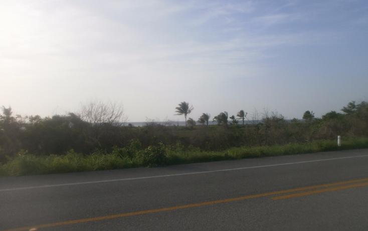 Foto de terreno comercial en venta en  , punta xen, champotón, campeche, 1286965 No. 10