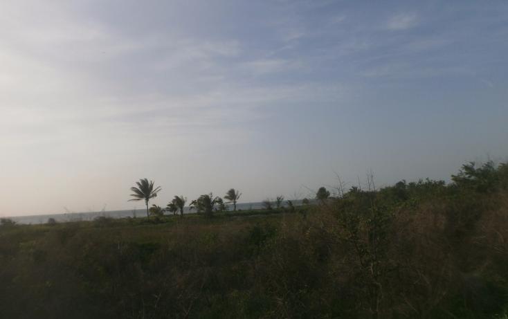 Foto de terreno comercial en venta en  , punta xen, champotón, campeche, 1286965 No. 12