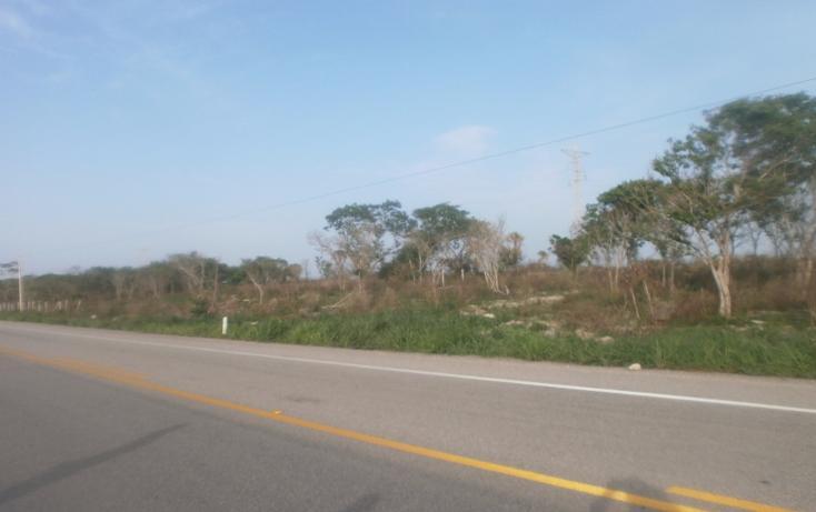 Foto de terreno comercial en venta en  , punta xen, champotón, campeche, 1286965 No. 13