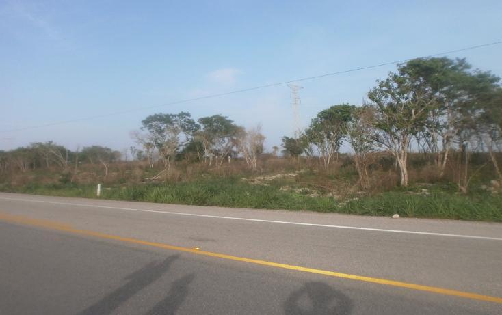 Foto de terreno comercial en venta en  , punta xen, champotón, campeche, 1286965 No. 14