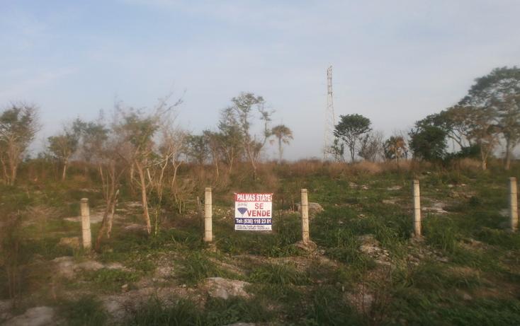 Foto de terreno comercial en venta en  , punta xen, champotón, campeche, 1286965 No. 15
