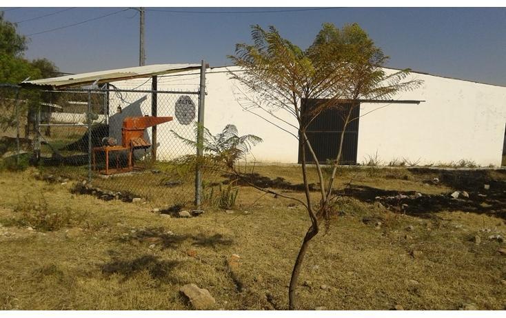Foto de rancho en renta en  , purísima del progreso, irapuato, guanajuato, 1638500 No. 04