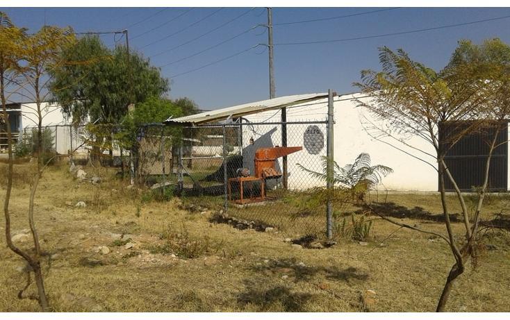 Foto de rancho en renta en  , purísima del progreso, irapuato, guanajuato, 1638500 No. 05