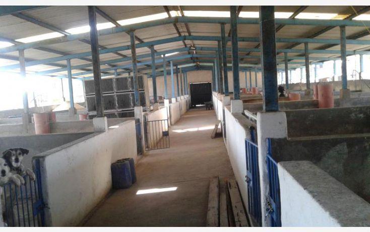 Foto de terreno comercial en venta en purisima del progreso, la calera, irapuato, guanajuato, 1648458 no 03