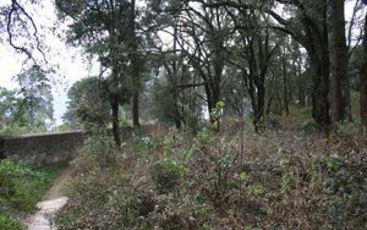 Foto de terreno habitacional en venta en, purísima, mineral del monte, hidalgo, 1548704 no 03