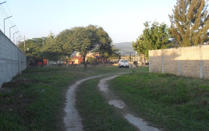 Foto de rancho en venta en  , berriozabal centro, berriozábal, chiapas, 397590 No. 09
