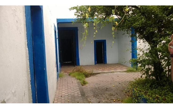 Foto de nave industrial en venta en  , quinta velarde, guadalajara, jalisco, 2045797 No. 14