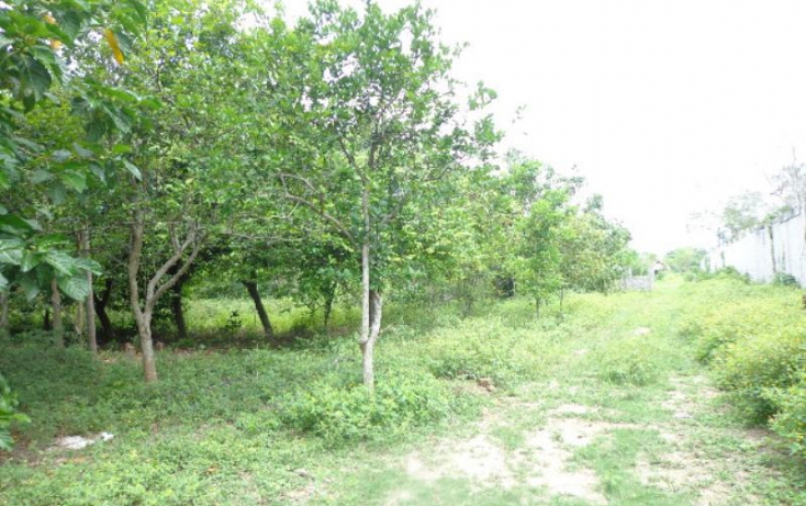 Foto de terreno industrial en venta en ra gonzalez 1a sección 1, carlos a madrazo, centro, tabasco, 445164 no 10