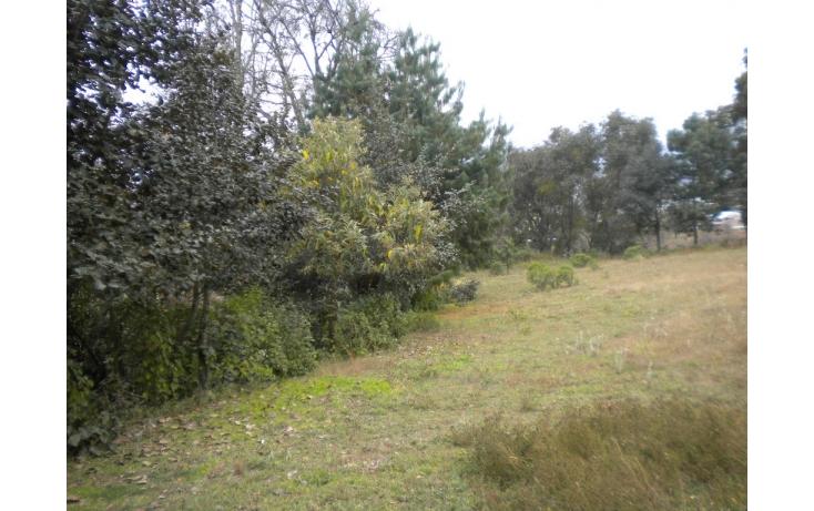 Foto de terreno habitacional en venta en ramón corona o 2 poniente, san sebastián, zacatlán, puebla, 585984 no 04