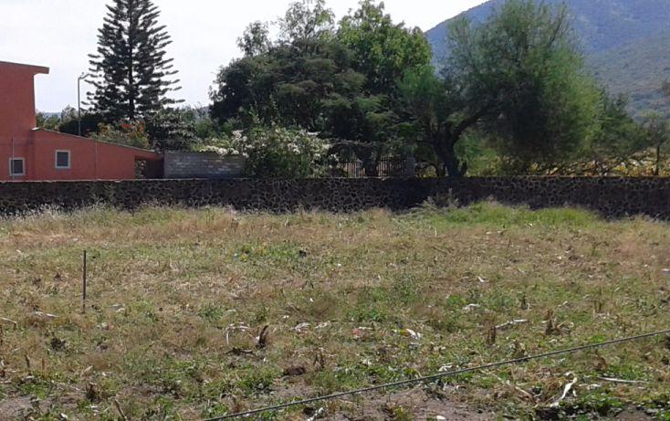 Foto de terreno habitacional en venta en ramón corona poniente 99, san cristóbal zapotitlán, jocotepec, jalisco, 1695372 no 02