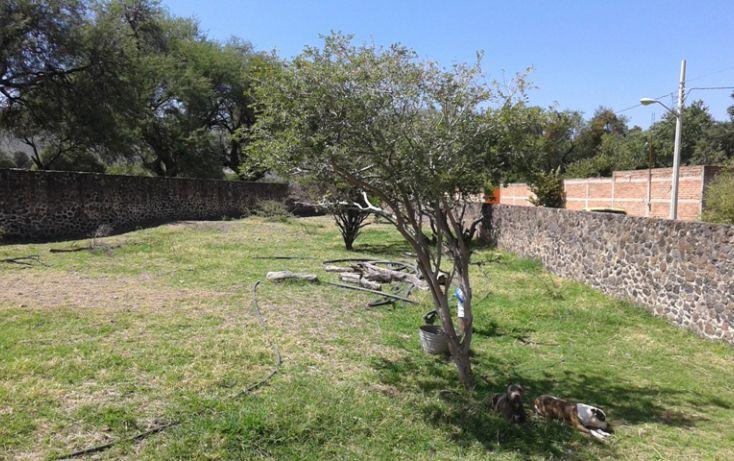 Foto de terreno habitacional en venta en ramón corona poniente sn, san cristóbal zapotitlán, jocotepec, jalisco, 1695374 no 05