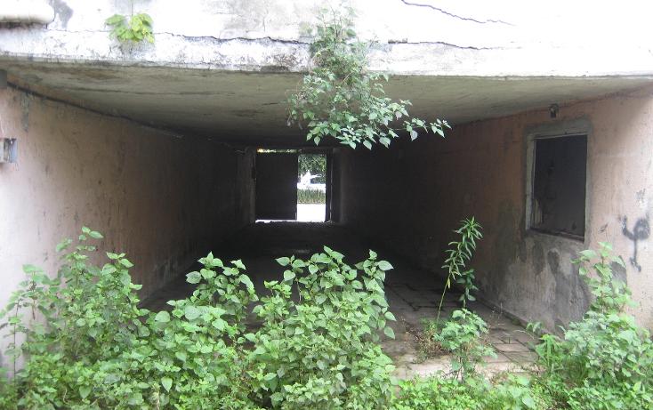 Foto de terreno comercial en renta en  , ramon farias, uruapan, michoacán de ocampo, 1203115 No. 03
