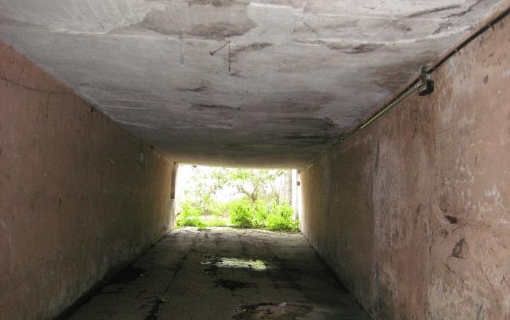 Foto de terreno comercial en renta en  , ramon farias, uruapan, michoacán de ocampo, 1203115 No. 04