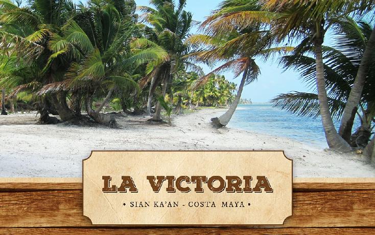 Foto de terreno comercial en venta en  , ramonal zona maya, felipe carrillo puerto, quintana roo, 1552720 No. 01