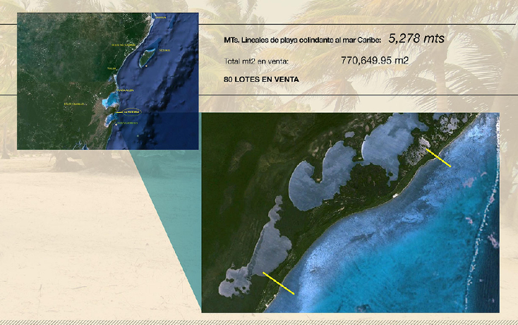 Foto de terreno comercial en venta en  , ramonal zona maya, felipe carrillo puerto, quintana roo, 1552720 No. 02