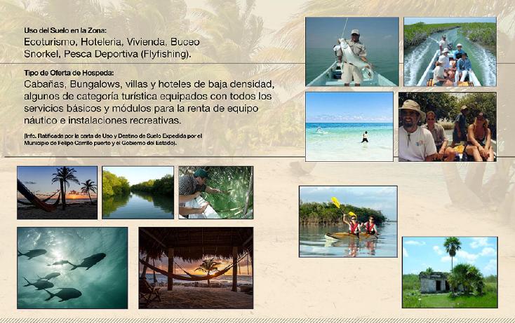 Foto de terreno comercial en venta en  , ramonal zona maya, felipe carrillo puerto, quintana roo, 1552720 No. 03