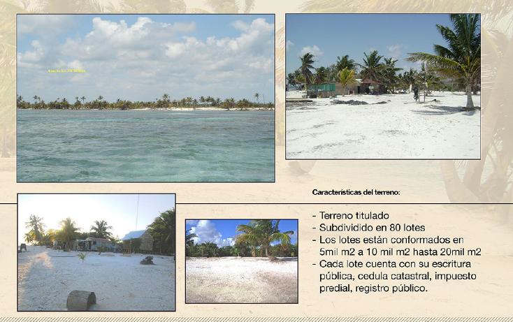 Foto de terreno comercial en venta en  , ramonal zona maya, felipe carrillo puerto, quintana roo, 1552720 No. 04