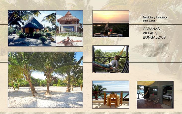 Foto de terreno comercial en venta en  , ramonal zona maya, felipe carrillo puerto, quintana roo, 1552720 No. 05
