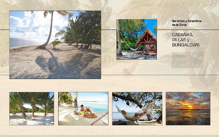 Foto de terreno comercial en venta en  , ramonal zona maya, felipe carrillo puerto, quintana roo, 1552720 No. 06