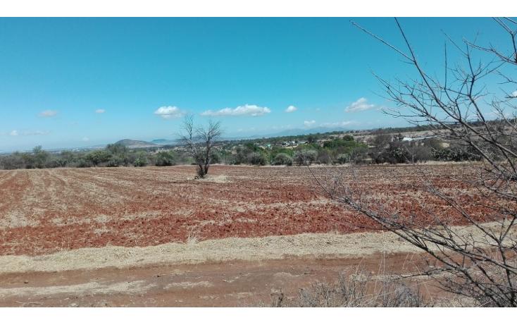 Foto de rancho en venta en  , ranchito de ruano, polotitlán, méxico, 1258929 No. 02