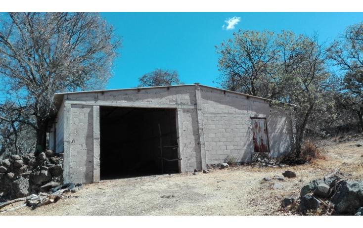 Foto de rancho en venta en  , ranchito de ruano, polotitlán, méxico, 1258929 No. 04