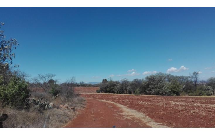 Foto de rancho en venta en  , ranchito de ruano, polotitlán, méxico, 1258929 No. 07