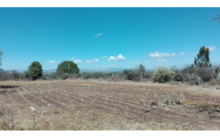 Foto de rancho en venta en  , ranchito de ruano, polotitlán, méxico, 1258929 No. 08