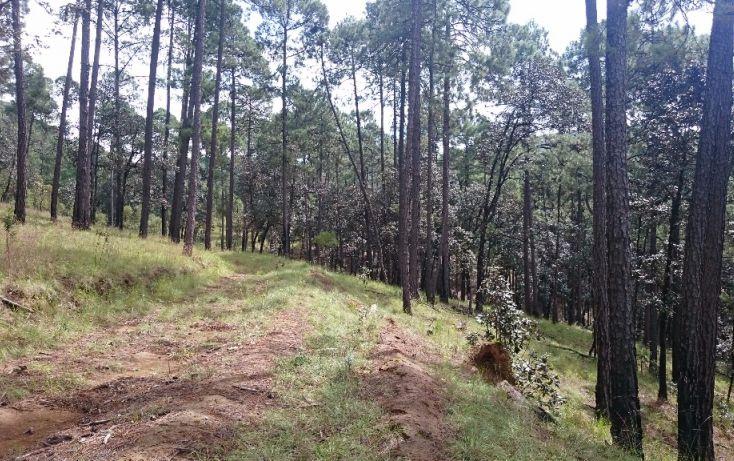 Foto de terreno habitacional en venta en rancho avándaro sn, avándaro, valle de bravo, estado de méxico, 1697920 no 02
