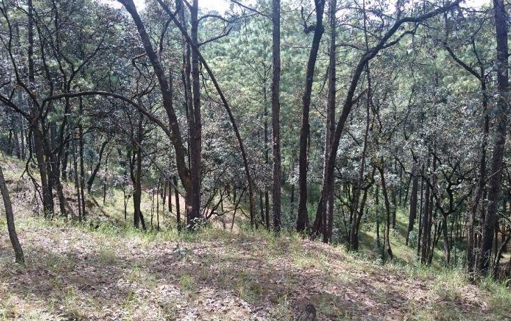 Foto de terreno habitacional en venta en rancho avándaro sn, avándaro, valle de bravo, estado de méxico, 1697920 no 12