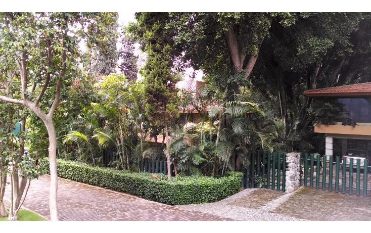 Foto de casa en renta en  , rancho cortes, cuernavaca, morelos, 1100057 No. 05