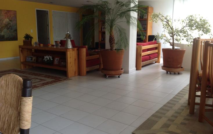 Foto de departamento en renta en  , rancho cortes, cuernavaca, morelos, 1107635 No. 05